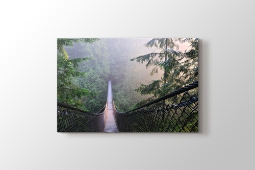 Picture of Lynn Canyon Park