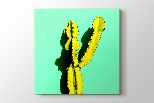 Picture of Yellow Cactus