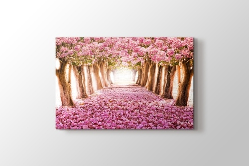 Picture of Pink Trees