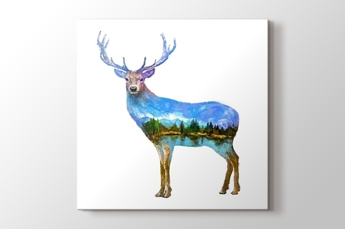 Picture of Deer Nature