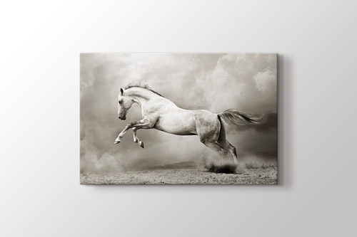 Picture of Silver Horse