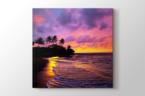 Picture of Tropical Beach