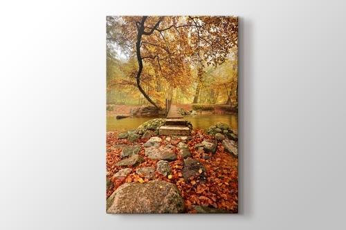 Picture of Autumn