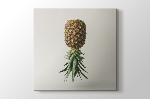 Picture of Pineapple Reverse