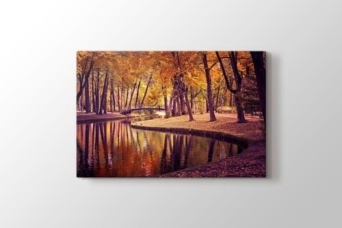 Picture of Autumn Colours