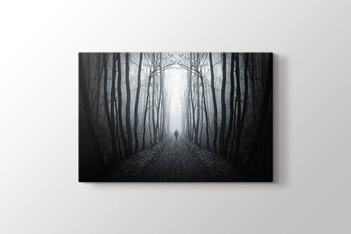 Picture of Forest Path