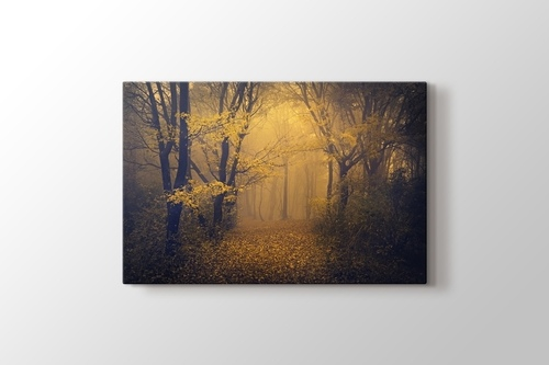 Picture of Autumn Fog Path
