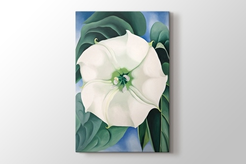 Picture of Georgia O'Keeffe - White Flower No1