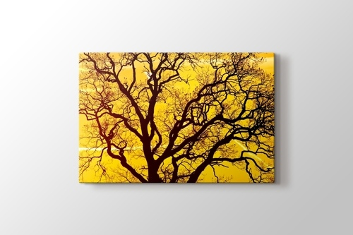 Picture of Yellow Sky
