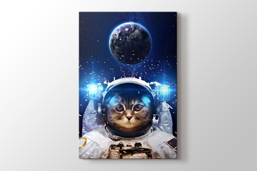 Picture of Beautiful Cat in Outer Space
