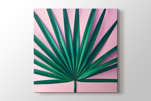 Picture of Palm Pink