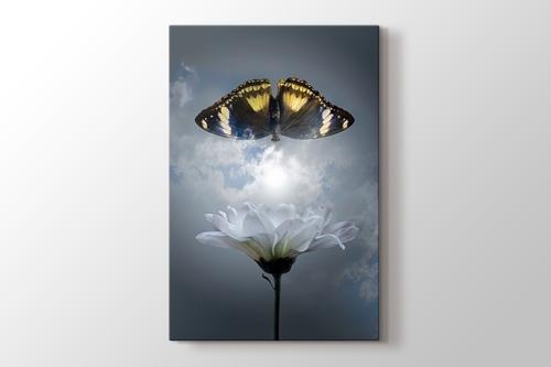Picture of Butterfly - Kelebek