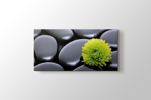Picture of Black Pebbles and Flower