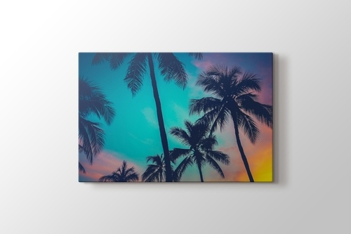 Picture of Palm Sky