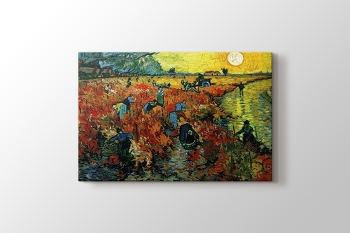 Picture of Red Vineyards