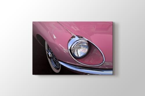 Picture of Jaguar