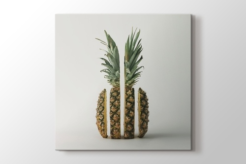 Picture of Pineapple Slices