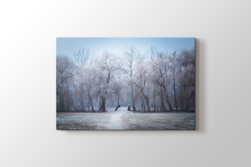Picture of Winter Trees