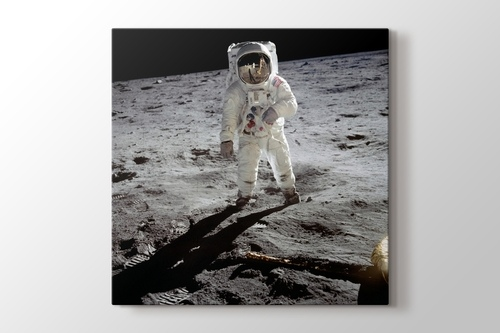 Picture of Buzz Aldrin on the Moon