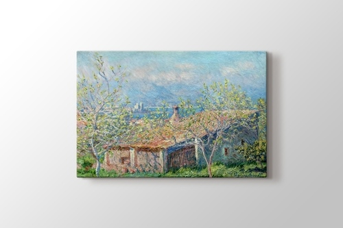 Picture of Gardeners House at Antibes