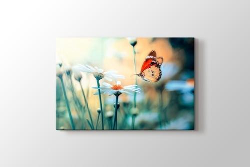 Picture of Kırçiçekleri ve Kelebek