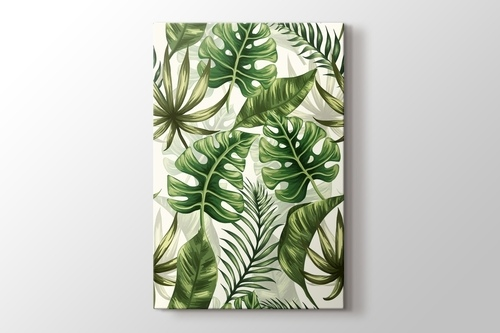 Picture of Monstera